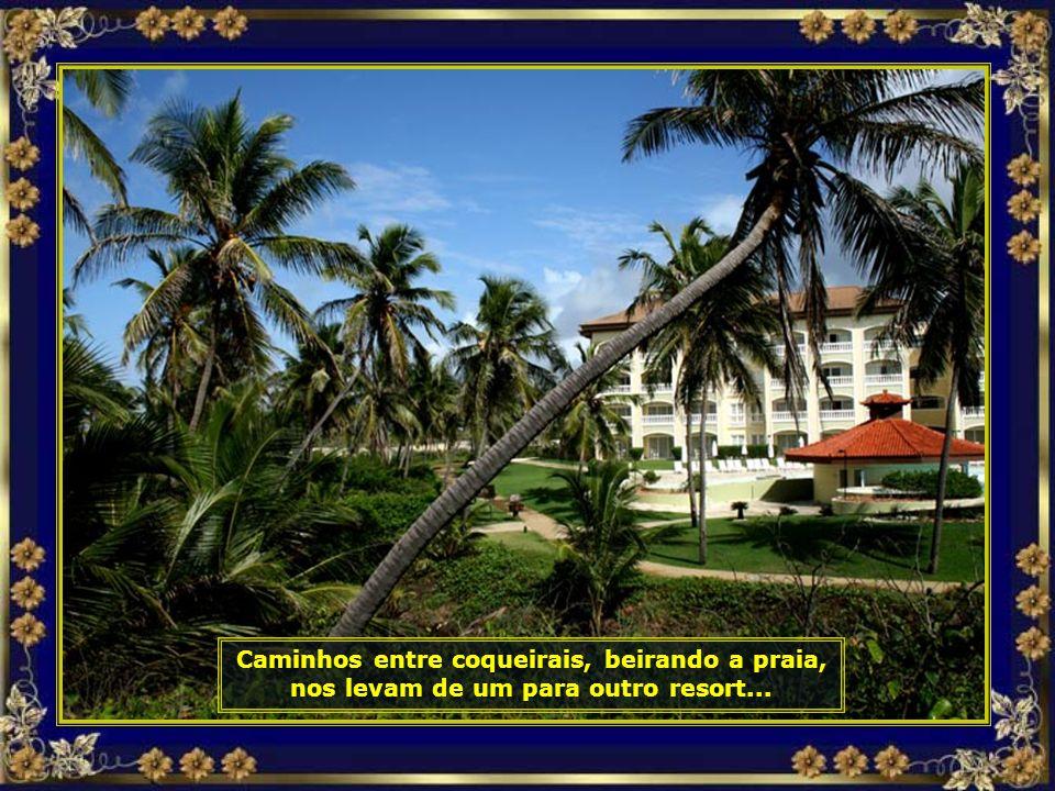 IMG_3740 - COSTA DO Sauípe - COQUEIRO TORTO-690.jpg