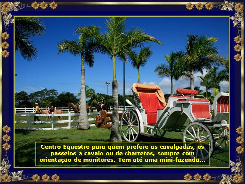 IMG_3421 - COSTA DO Sauípe - CENTRO EQUESTRE-690.jpg
