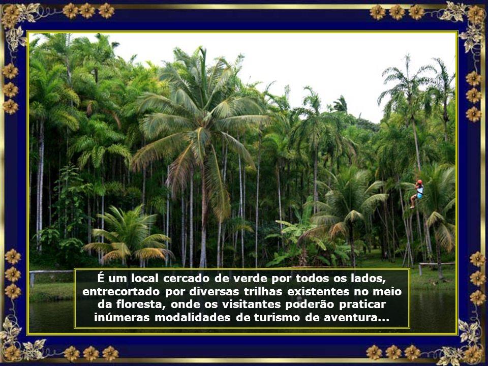 IMG_3155 - COSTA DO Sauípe - ECOPARQUE - TIROLESA-690.jpg