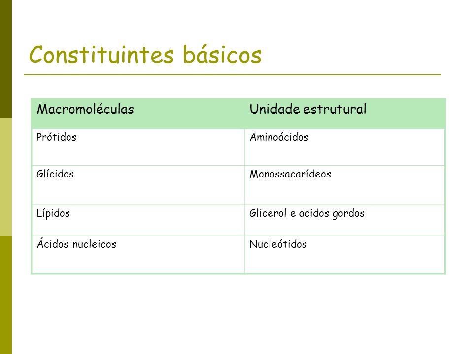 Constituintes básicos