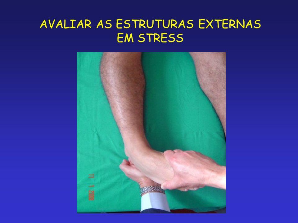 AVALIAR AS ESTRUTURAS EXTERNAS EM STRESS