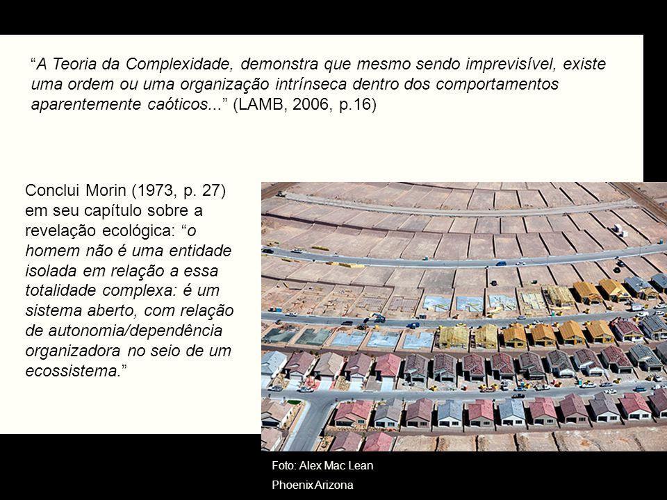 A Teoria da Complexidade, demonstra que mesmo sendo imprevisível, existe uma ordem ou uma organização intrínseca dentro dos comportamentos aparentemente caóticos... (LAMB, 2006, p.16)