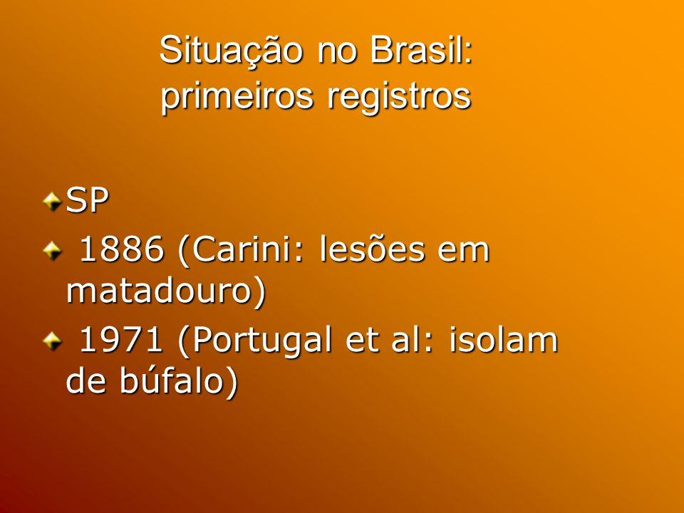 Situação no Brasil: primeiros registros