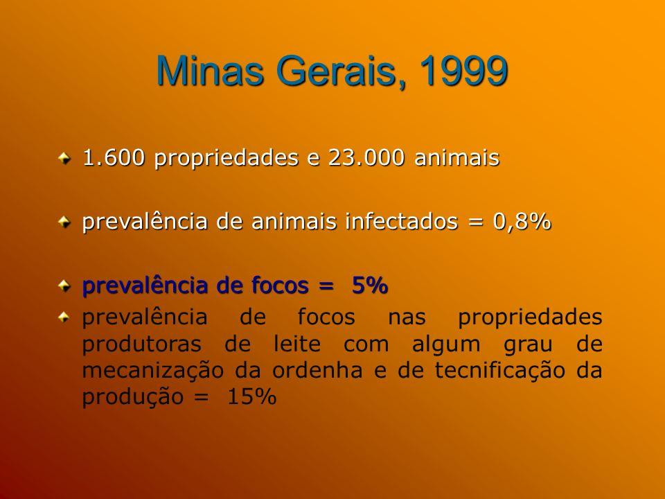 Minas Gerais, 1999 1.600 propriedades e 23.000 animais
