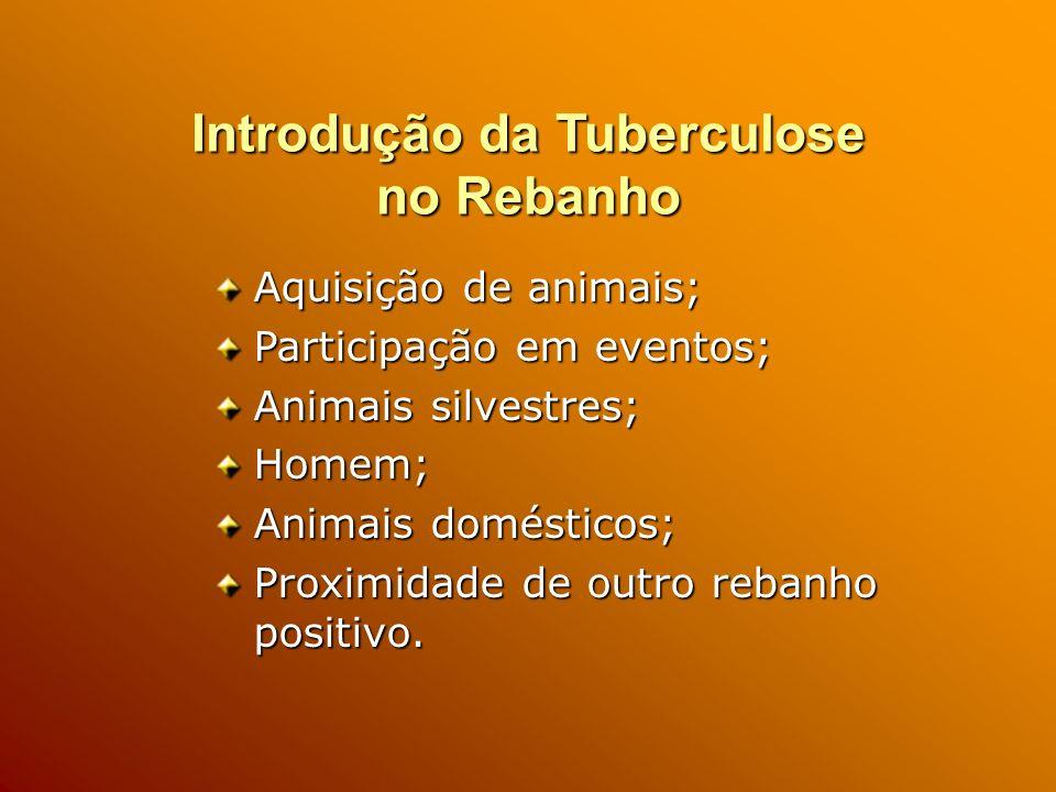 Introdução da Tuberculose no Rebanho
