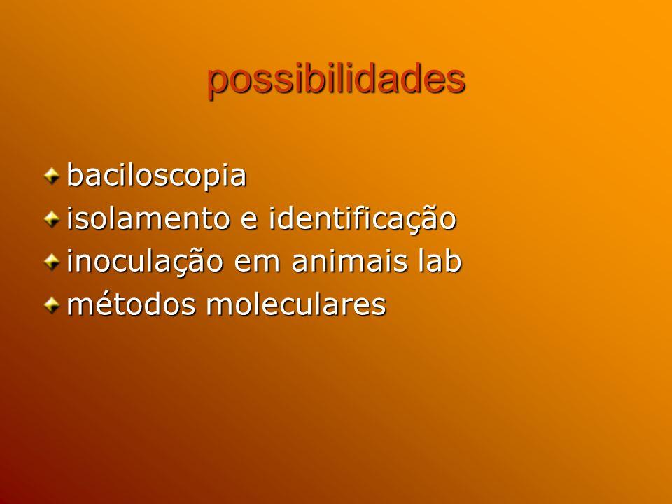possibilidades baciloscopia isolamento e identificação