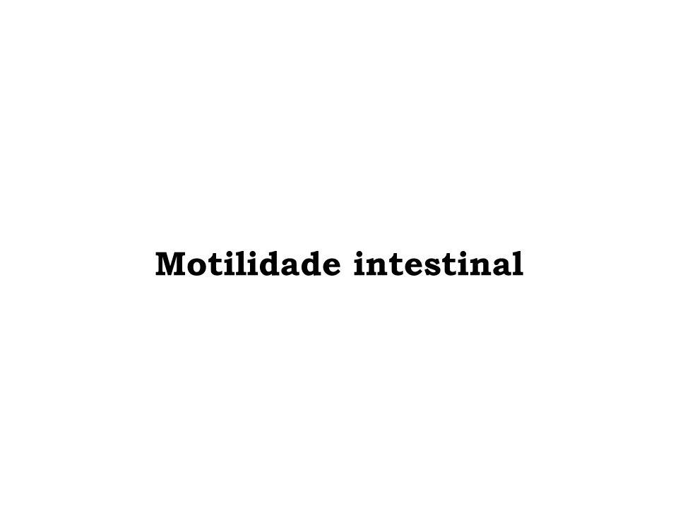 Motilidade intestinal