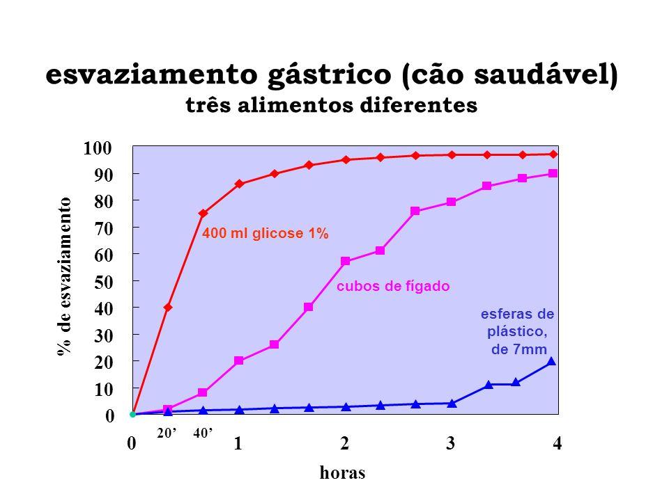 esvaziamento gástrico (cão saudável) três alimentos diferentes