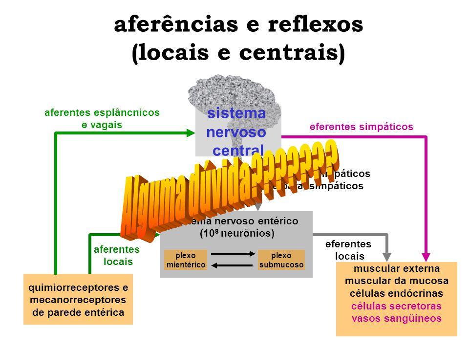 aferências e reflexos (locais e centrais)