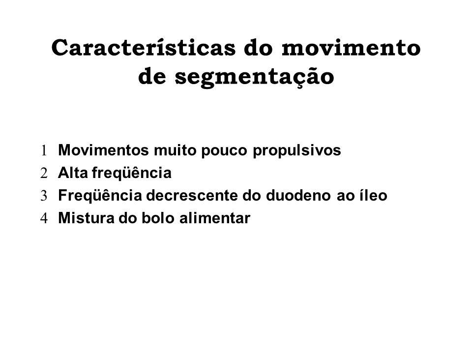 Características do movimento de segmentação