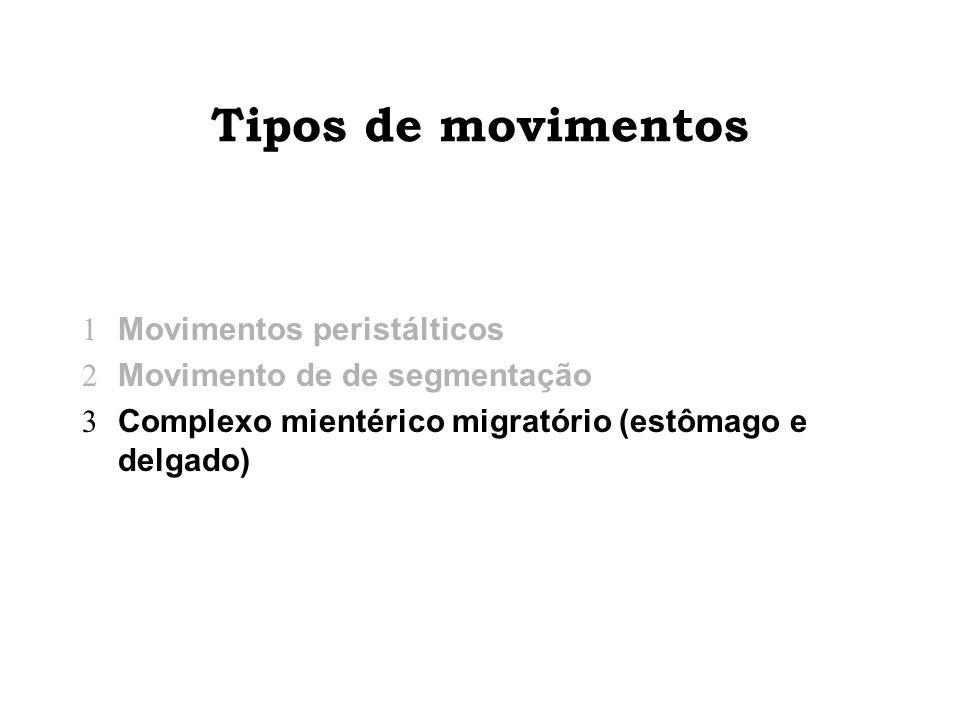 Tipos de movimentos Movimentos peristálticos