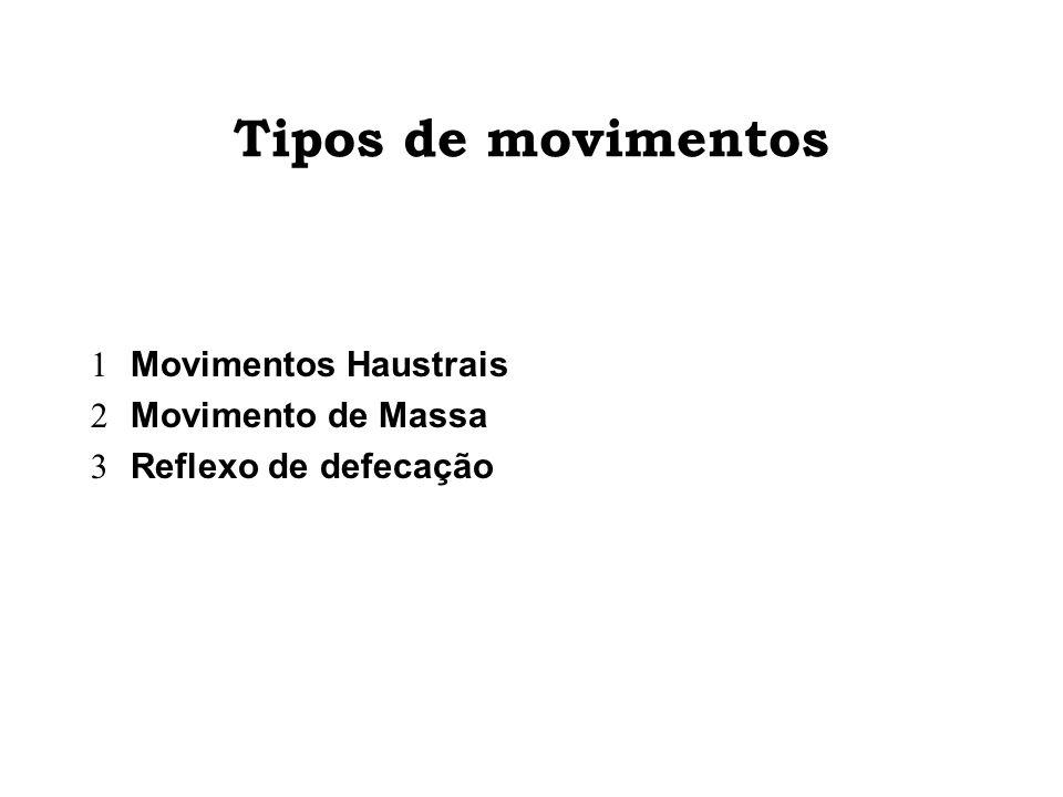 Tipos de movimentos Movimentos Haustrais Movimento de Massa