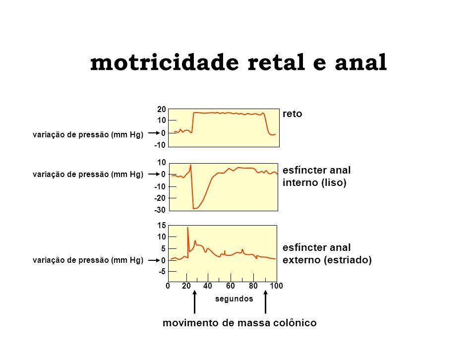 motricidade retal e anal