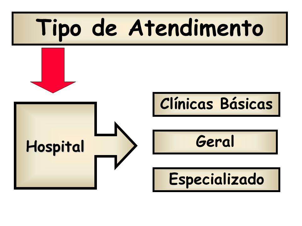 Tipo de Atendimento Clínicas Básicas Geral Hospital Especializado