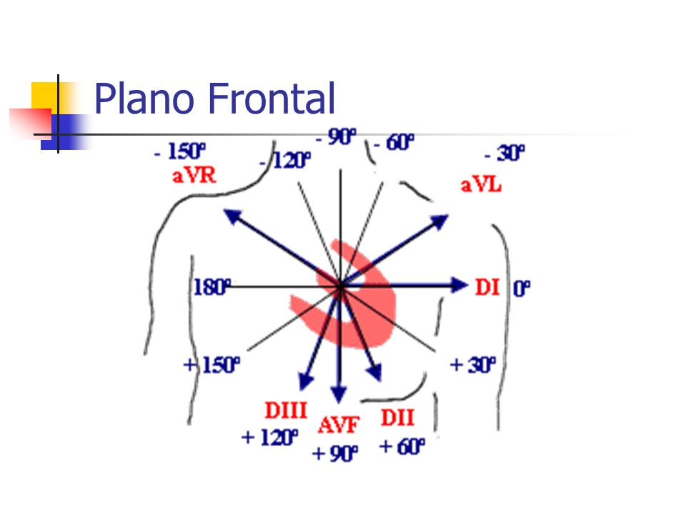 Plano Frontal