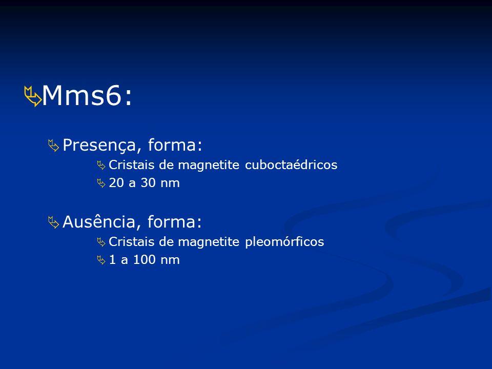 Mms6: Presença, forma: Ausência, forma: