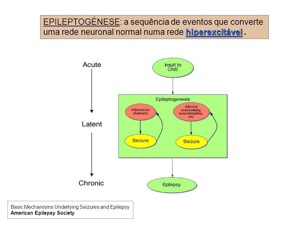 EPILEPTOGÉNESE: a sequência de eventos que converte uma rede neuronal normal numa rede hiperexcitável .