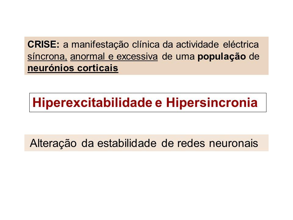 Hiperexcitabilidade e Hipersincronia