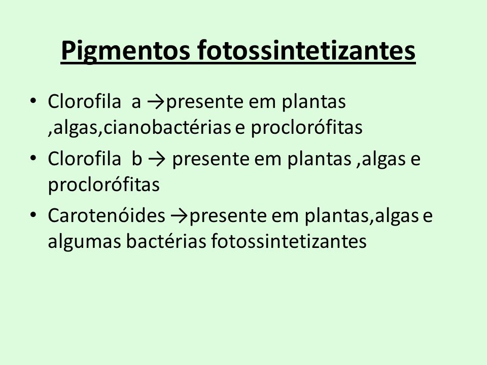 Pigmentos fotossintetizantes