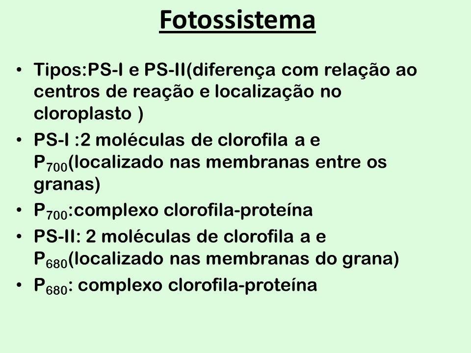 Fotossistema Tipos:PS-I e PS-II(diferença com relação ao centros de reação e localização no cloroplasto )