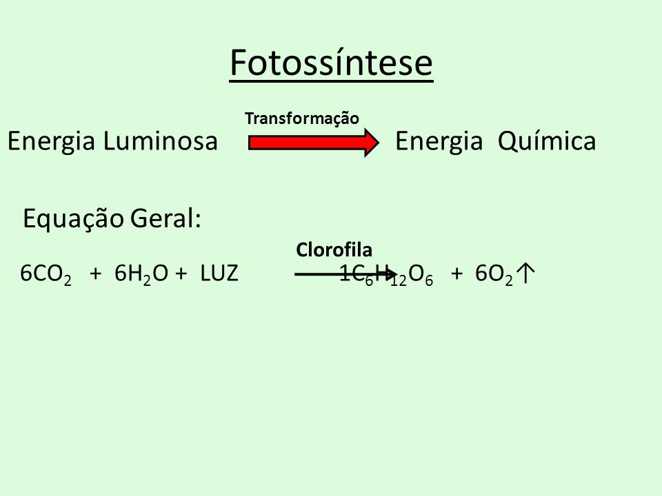 Fotossíntese Energia Luminosa Energia Química Equação Geral: