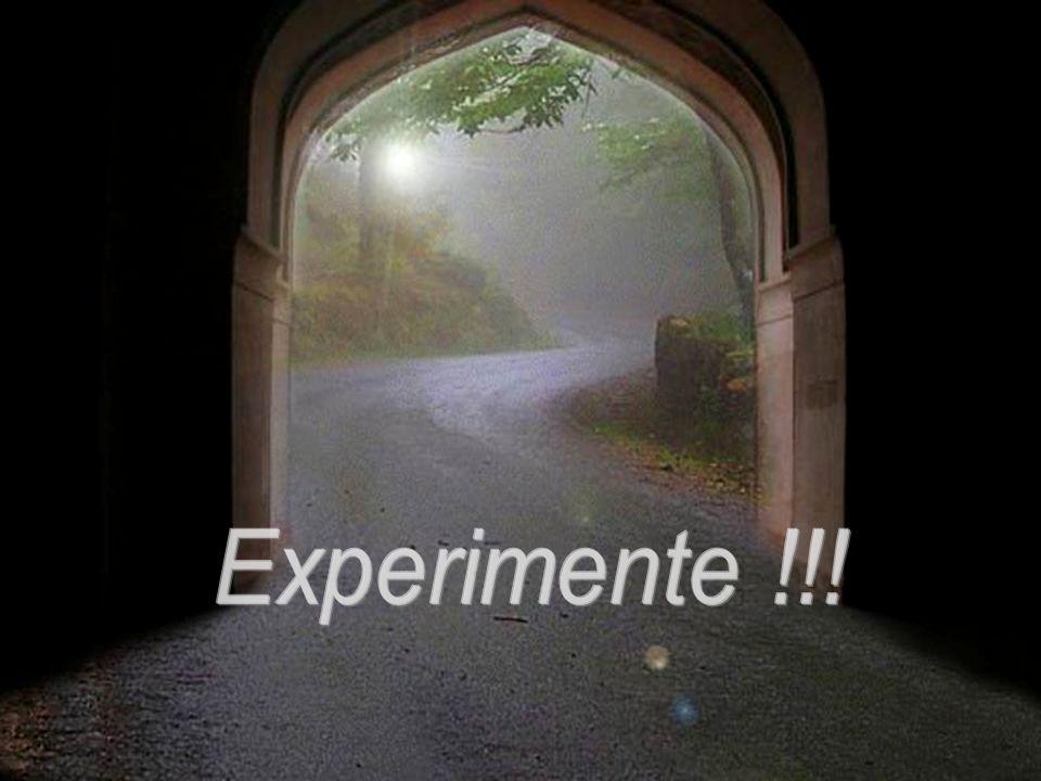 Experimente !!!