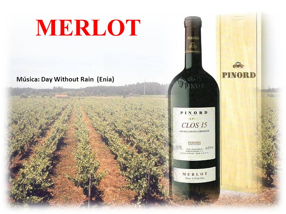 MERLOT Música: Day Without Rain (Enia)