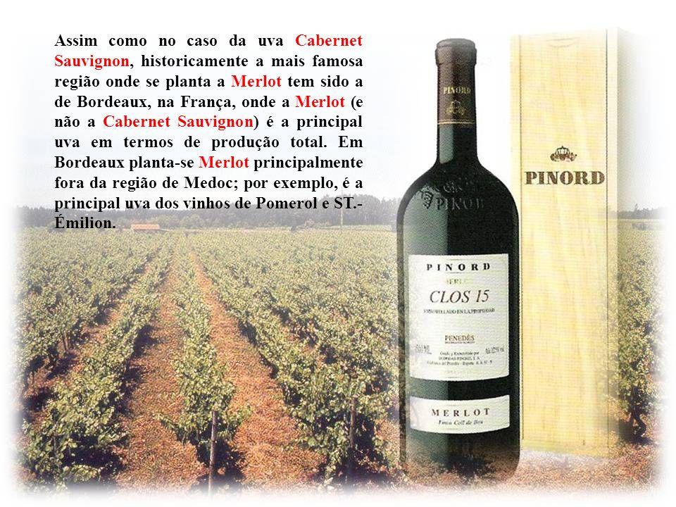 Assim como no caso da uva Cabernet Sauvignon, historicamente a mais famosa região onde se planta a Merlot tem sido a de Bordeaux, na França, onde a Merlot (e não a Cabernet Sauvignon) é a principal uva em termos de produção total.