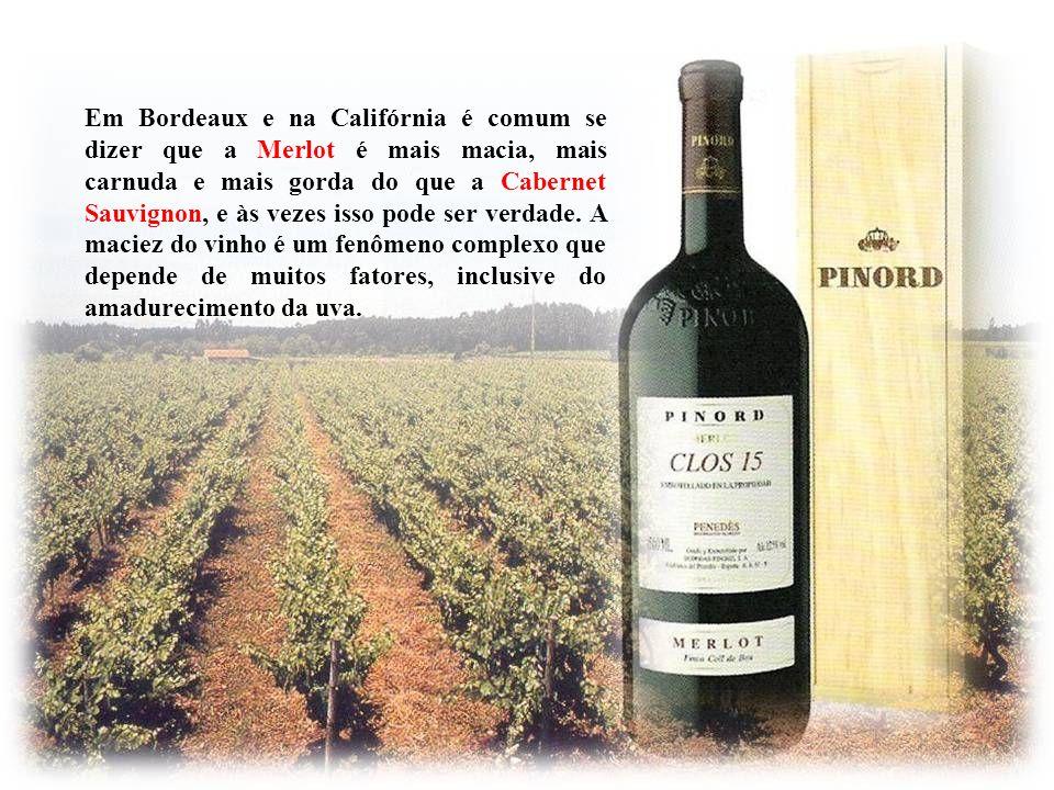 Em Bordeaux e na Califórnia é comum se dizer que a Merlot é mais macia, mais carnuda e mais gorda do que a Cabernet Sauvignon, e às vezes isso pode ser verdade. A maciez do vinho é um fenômeno complexo que depende de muitos fatores, inclusive do amadurecimento da uva.