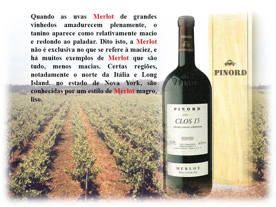 Quando as uvas Merlot de grandes vinhedos amadurecem plenamente, o tanino aparece como relativamente macio e redondo ao paladar.