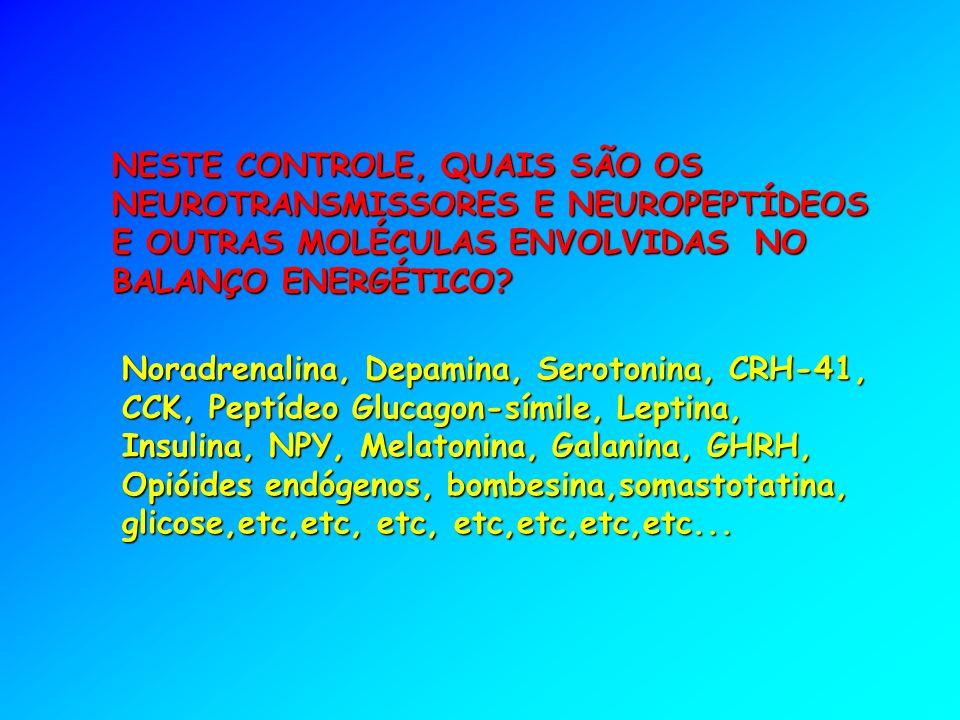 NESTE CONTROLE, QUAIS SÃO OS NEUROTRANSMISSORES E NEUROPEPTÍDEOS E OUTRAS MOLÉCULAS ENVOLVIDAS NO BALANÇO ENERGÉTICO