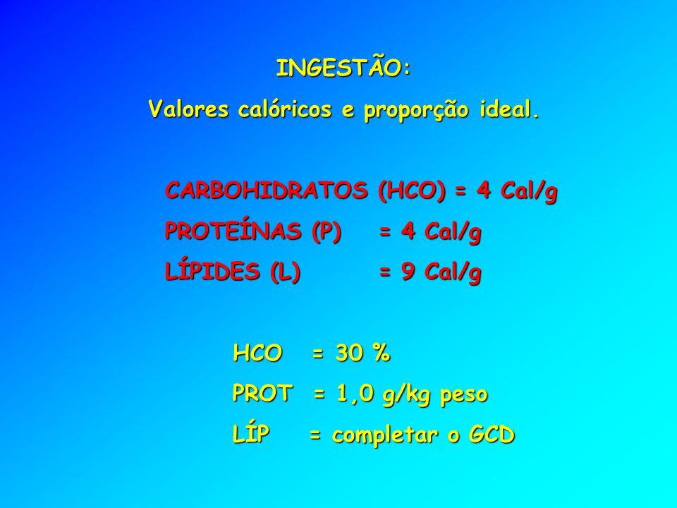 Valores calóricos e proporção ideal.