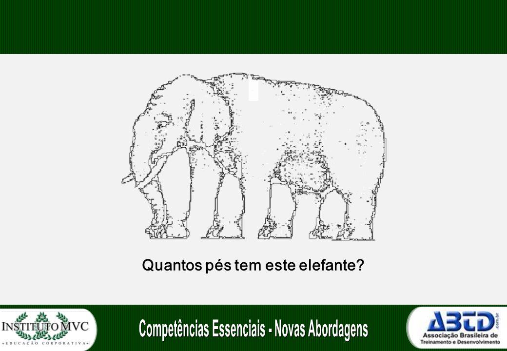 Quantos pés tem este elefante