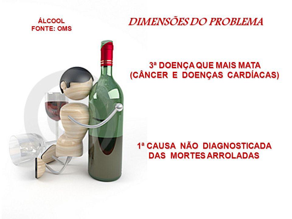 DIMENSÕES DO PROBLEMA 3ª DOENÇA QUE MAIS MATA