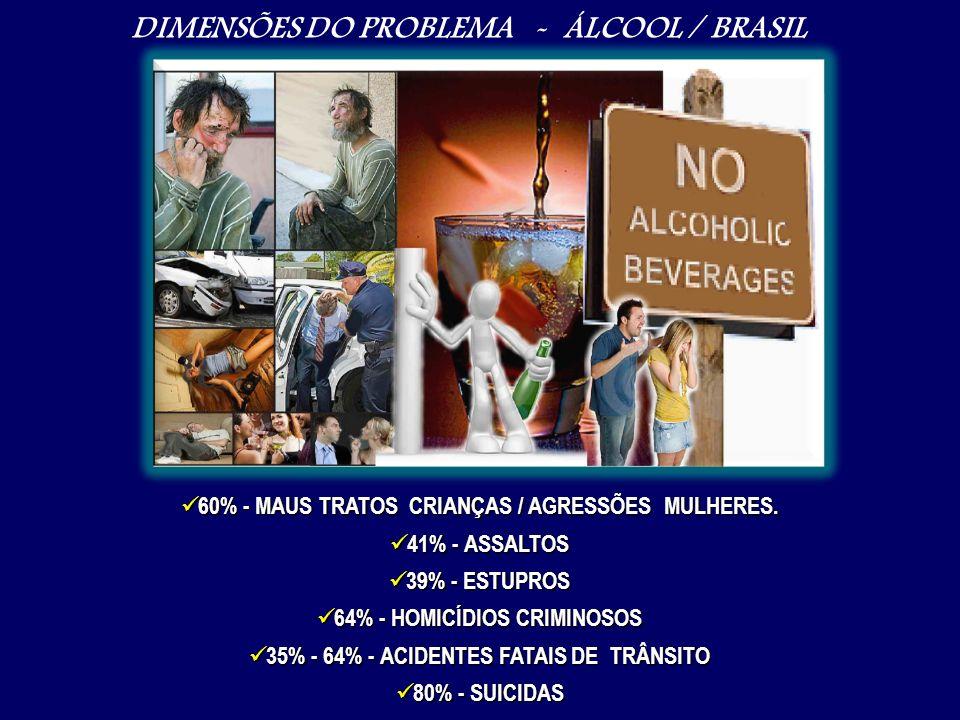 DIMENSÕES DO PROBLEMA - ÁLCOOL / BRASIL