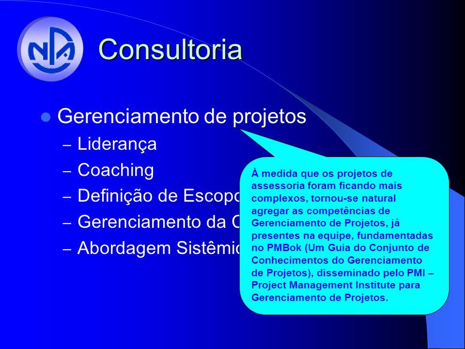Consultoria Gerenciamento de projetos Liderança Coaching