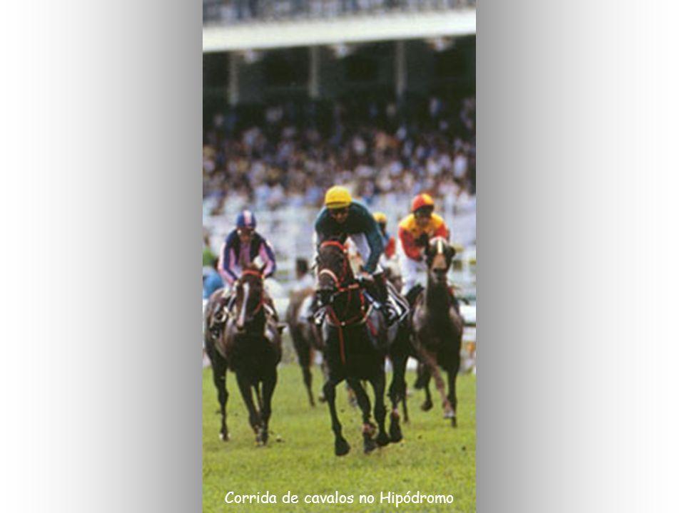 Corrida de cavalos no Hipódromo