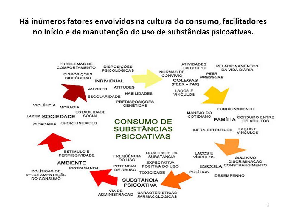 Há inúmeros fatores envolvidos na cultura do consumo, facilitadores no início e da manutenção do uso de substâncias psicoativas.