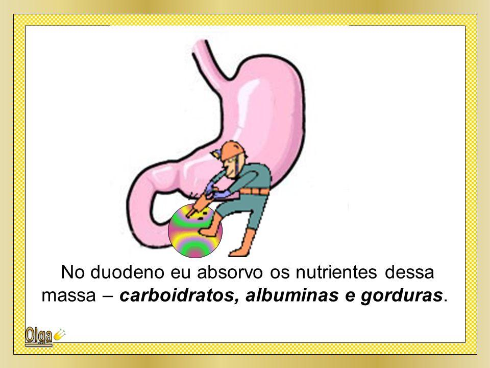 No duodeno eu absorvo os nutrientes dessa massa – carboidratos, albuminas e gorduras.