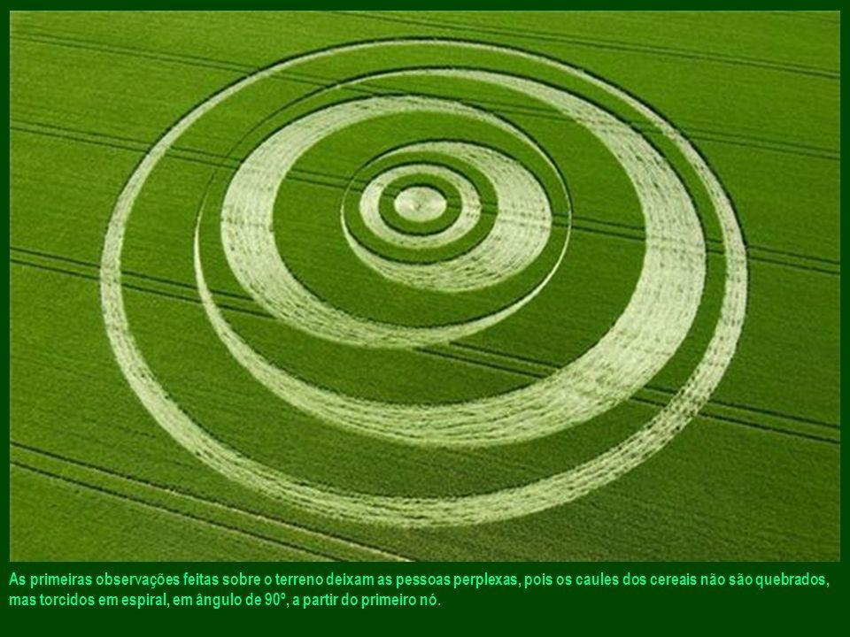 As primeiras observações feitas sobre o terreno deixam as pessoas perplexas, pois os caules dos cereais não são quebrados, mas torcidos em espiral, em ângulo de 90º, a partir do primeiro nó.
