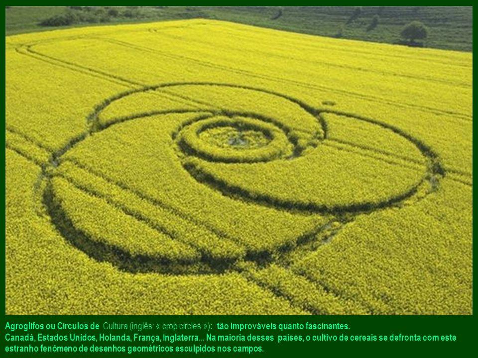 Agroglifos ou Círculos de Cultura (inglês: « crop circles »): tão improváveis quanto fascinantes.