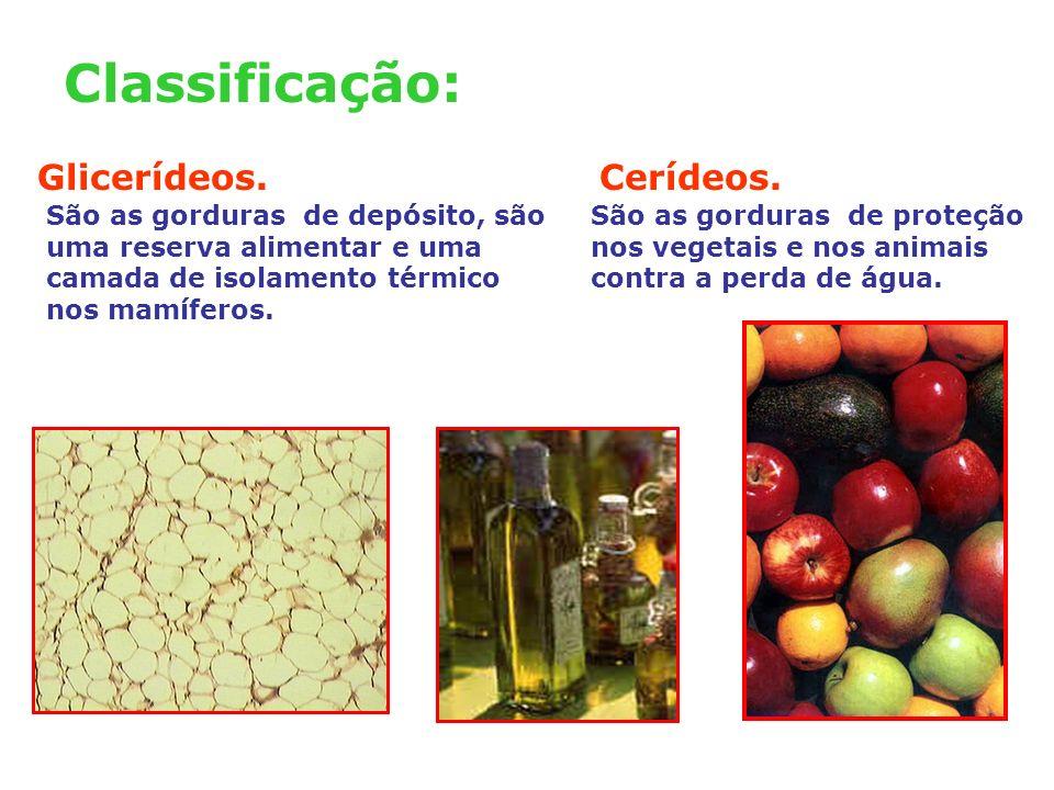 Classificação: Glicerídeos. Cerídeos.