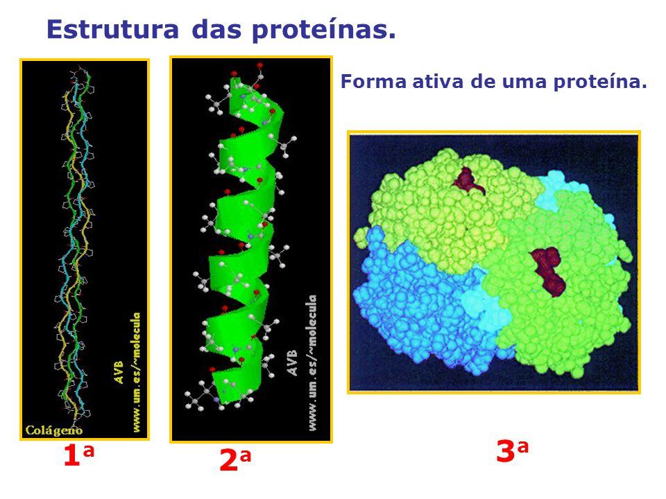 Estrutura das proteínas.