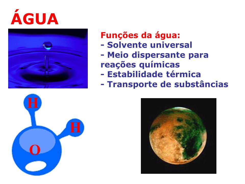 ÁGUA H H O Funções da água: - Solvente universal
