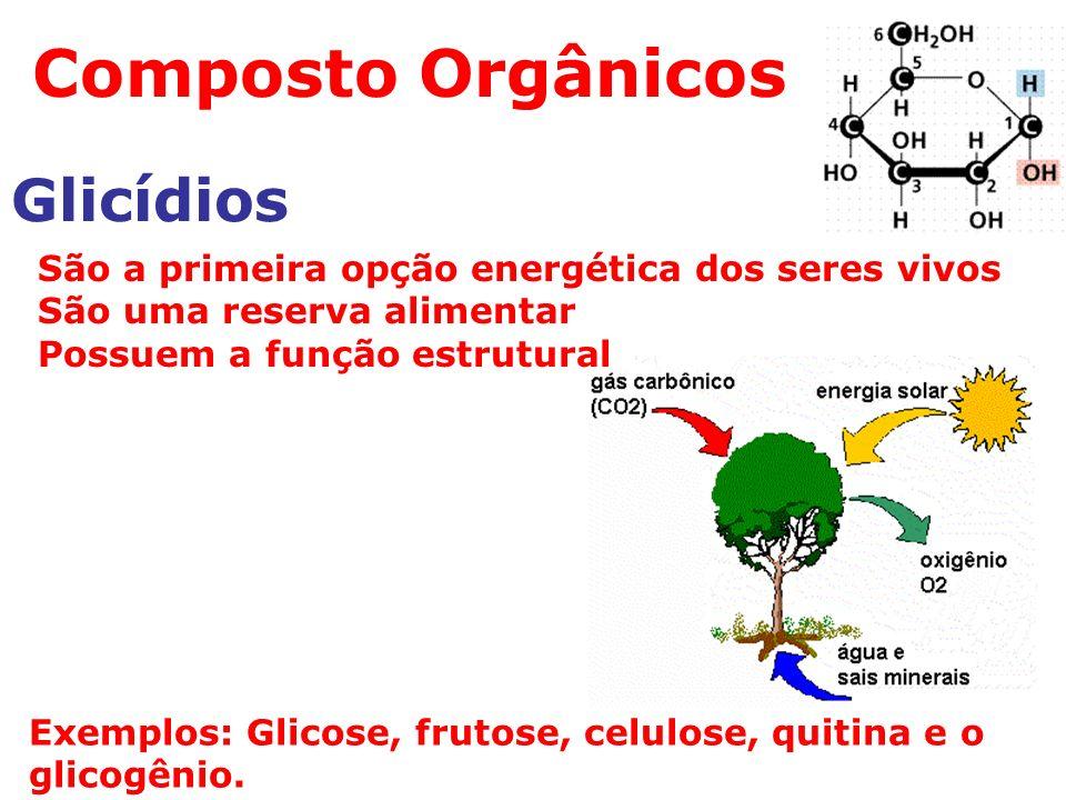 Composto Orgânicos Glicídios