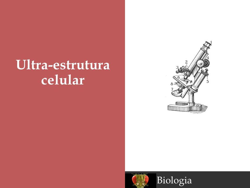 Ultra-estrutura celular