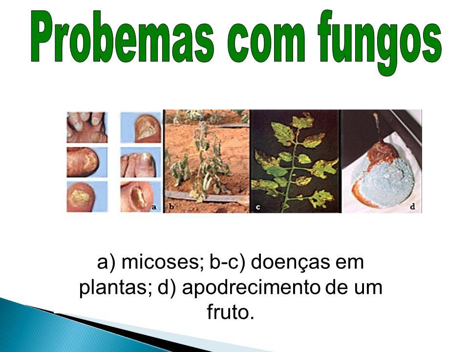a) micoses; b-c) doenças em plantas; d) apodrecimento de um fruto.