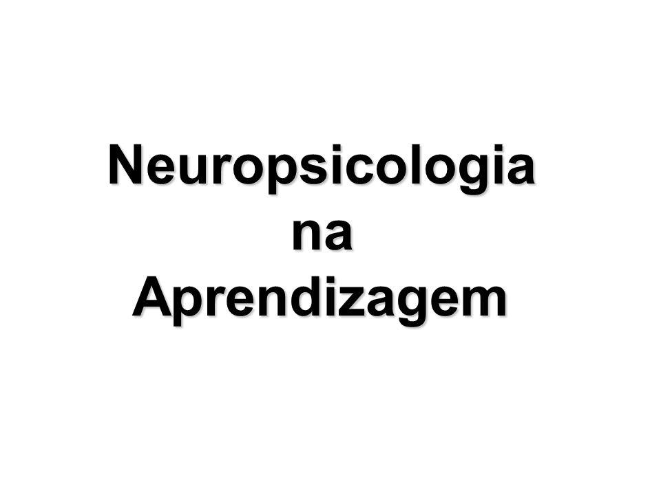 Neuropsicologia na Aprendizagem