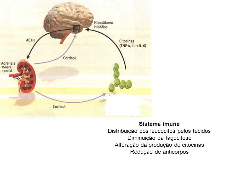 Distribuição dos leucócitos pelos tecidos Diminuição da fagocitose
