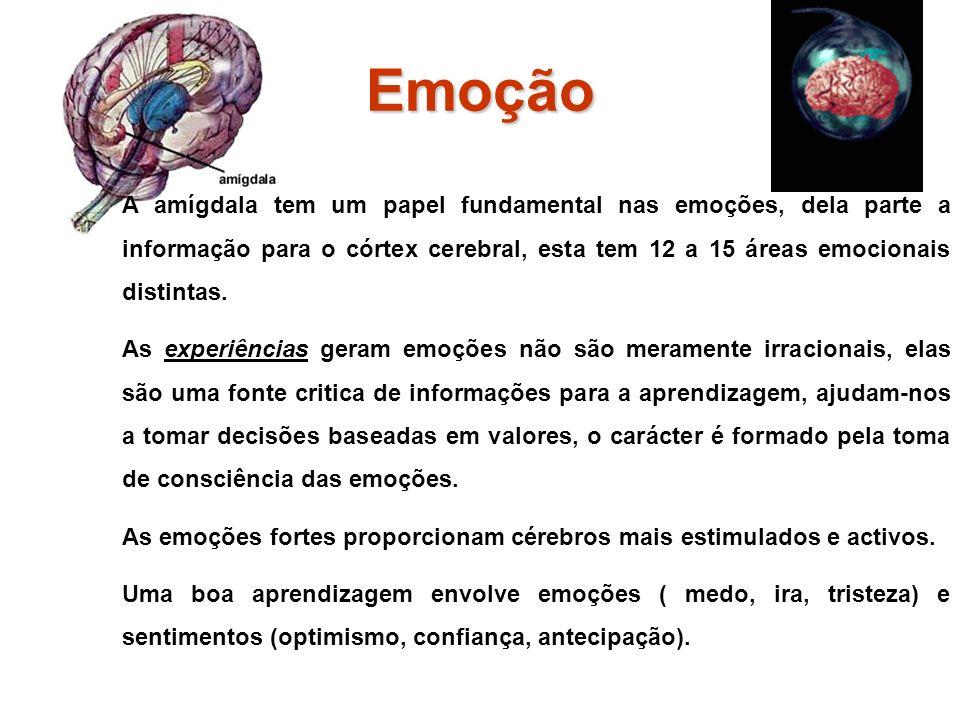 Emoção A amígdala tem um papel fundamental nas emoções, dela parte a informação para o córtex cerebral, esta tem 12 a 15 áreas emocionais distintas.